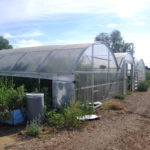 hoop house constucted while we were gone!