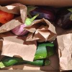 Huerta del Valle vegatable boxes organic community garden produce ontario pomona